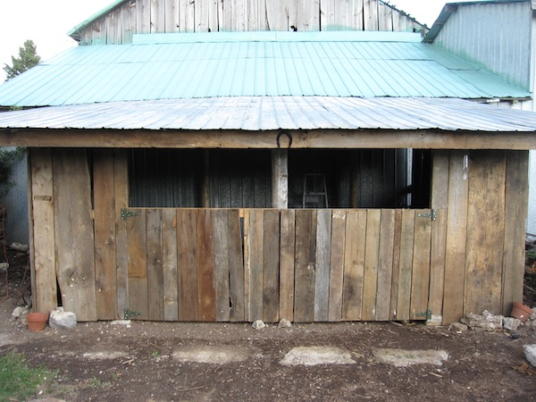 how to build a wood shed nz